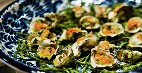 Pickled Oysters