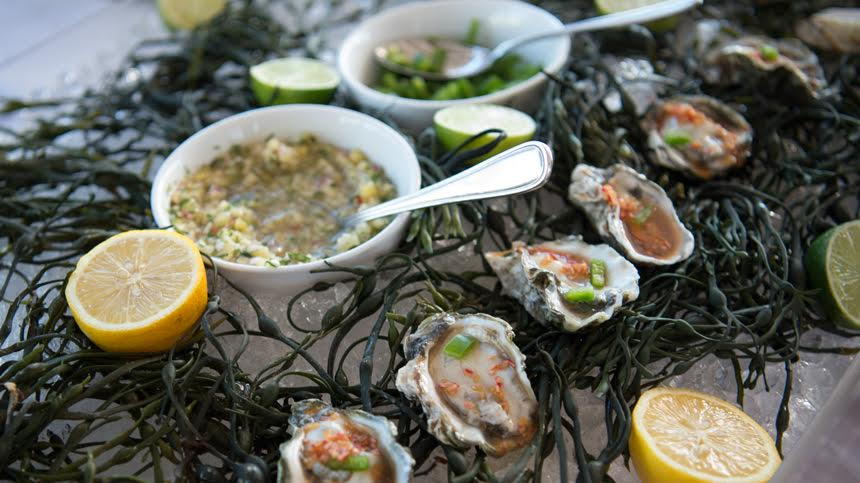 Chilled Kushi Oysters on the Half Shell with a Popping Jalapeño Ponzu By Lure Fishbar