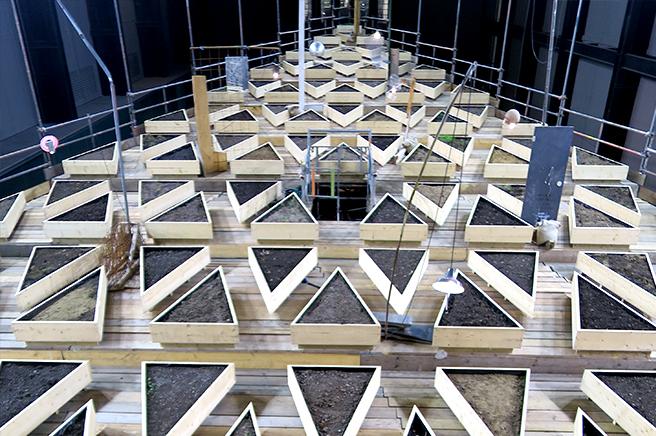 Exposición de Abraham Cruzvillegas en Tate Modern
