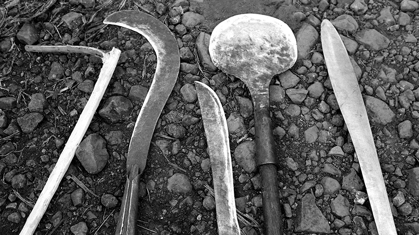 tools for agave