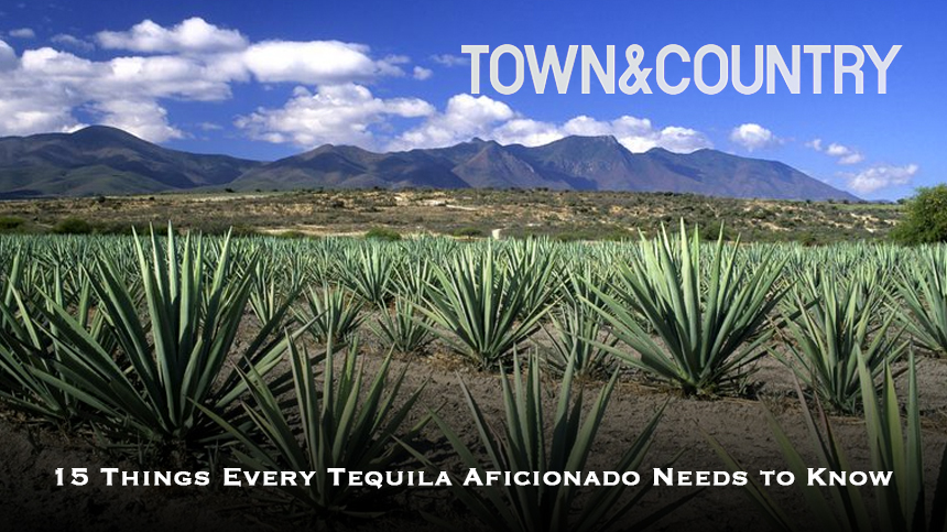 Casa Dragones Town and Country Tequila
