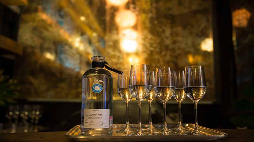 Casa Dragones Joven being served in the Tasting Room, in Redial Overture Tequila Tasting glasses